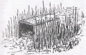 Гнездовой ящик для уток (по В. Немцову)